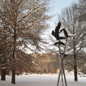 Eagles Winter
